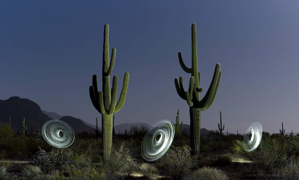 Lightmark No.112, Saguaro Cactus, Organ Pipe Cactus National Monument, Arizona, Light Painting, Night Photography.