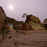 Lightmark No.119, Zion National Park, Utah, USA, Light Painting, Night Photography.