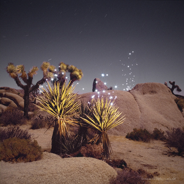 Lightmark No.44, Jumbo Rock, Joshua Tree National Park, California, USA, Light Painting, Night Photography.